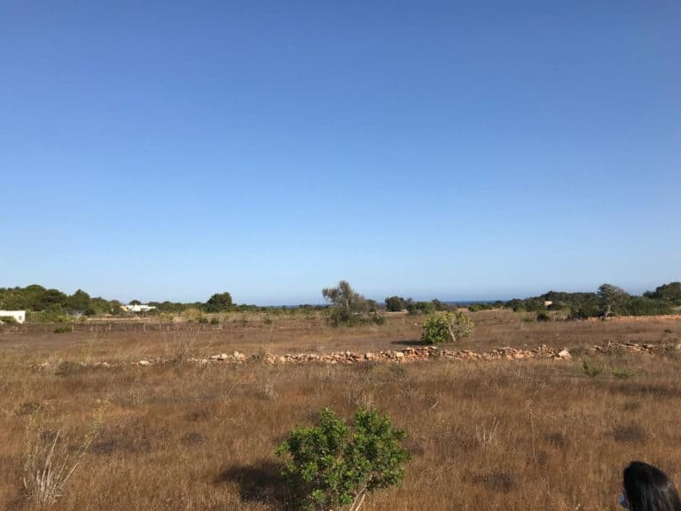 Buy building land in Formentera with license and sea view