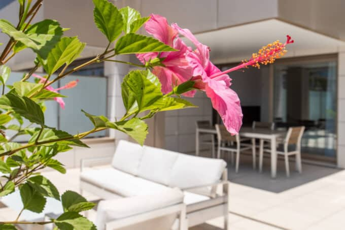 1.1.D Botafoch apartment rental 2 bedrooms with 45m2 terrace