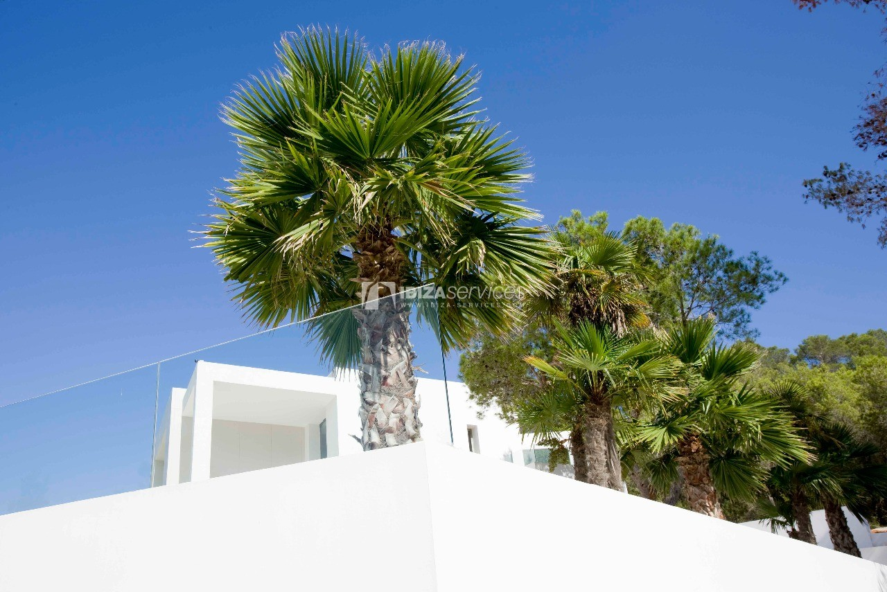 Luxury 8 bedrooms Ibiza villa Elisabeth to rent perspectiva 18