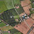 Ses Paisses San Antonio building plot of 1.242m2